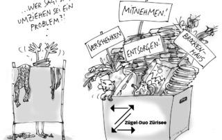 Hilfe beim Umzug ins Altersheim I Zügel-Duo Zürisee