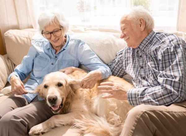 Blog: Senioren mit Hund im Glück
