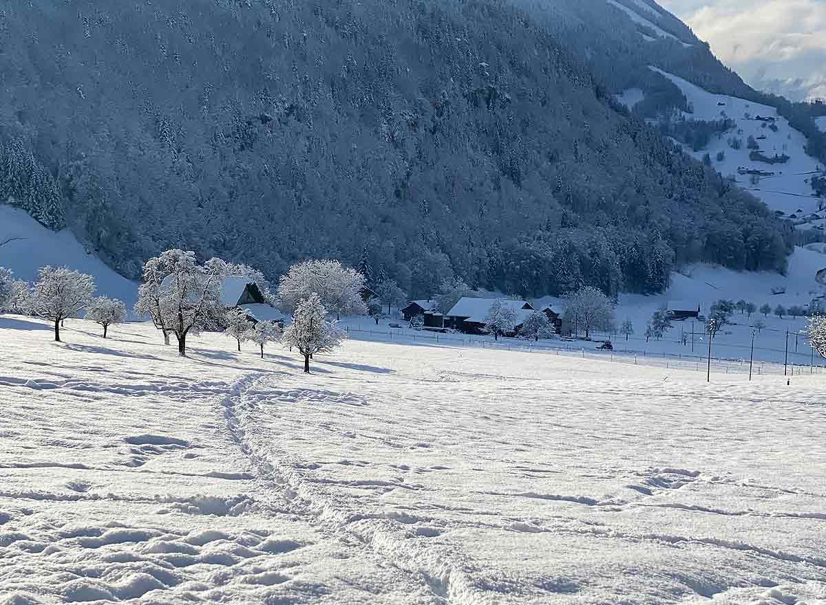 Blog von Christines Seniorenbetreuung - Wie kommen Senioren gesund und fit durch den Winter?